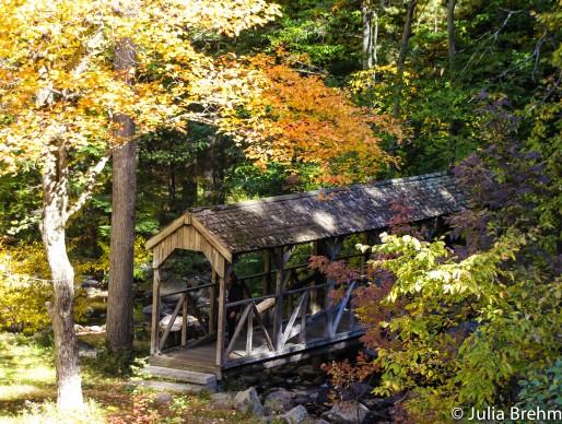 fall_foliage_1-1-von-1