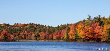 fall_foliage_17-1-von-1