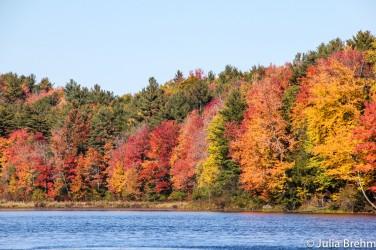 fall_foliage_18-1-von-1
