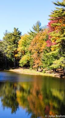 fall_foliage_2-1-von-1