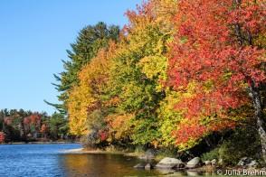 fall_foliage_23-1-von-1