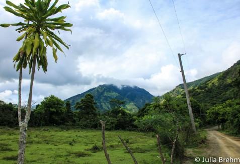 jamaica_19-1-von-1