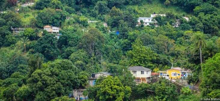 jamaica_25-1-von-1