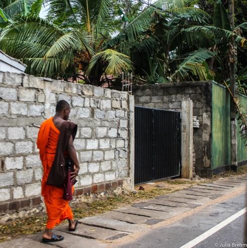 Sri Lankan life