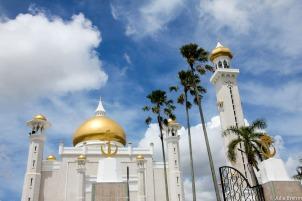 Brunei_13 (1 von 1)