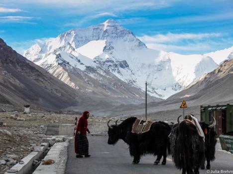 Himalaja_Region_15 (1 von 1)